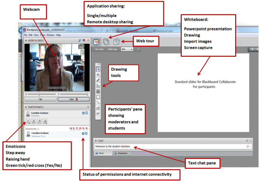 Collaborate's user interface