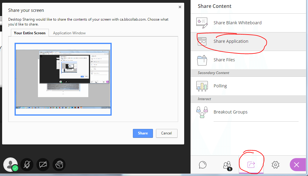 application sharing in Collaborate